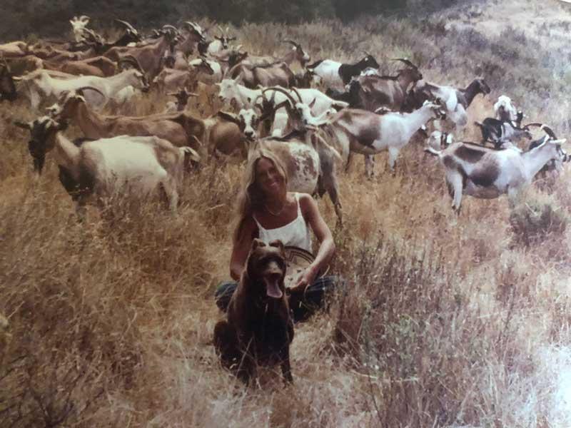 Christine Adcock goat herder