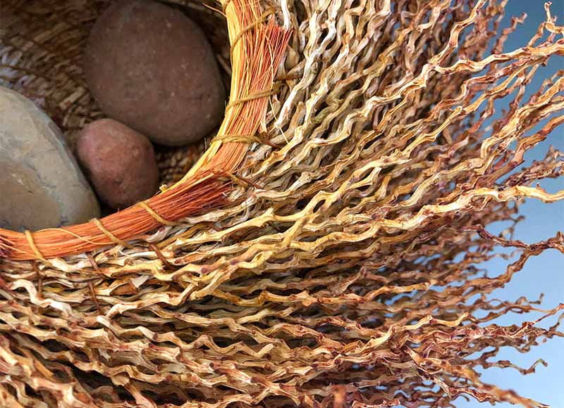 Date Palm Inflorescense basket