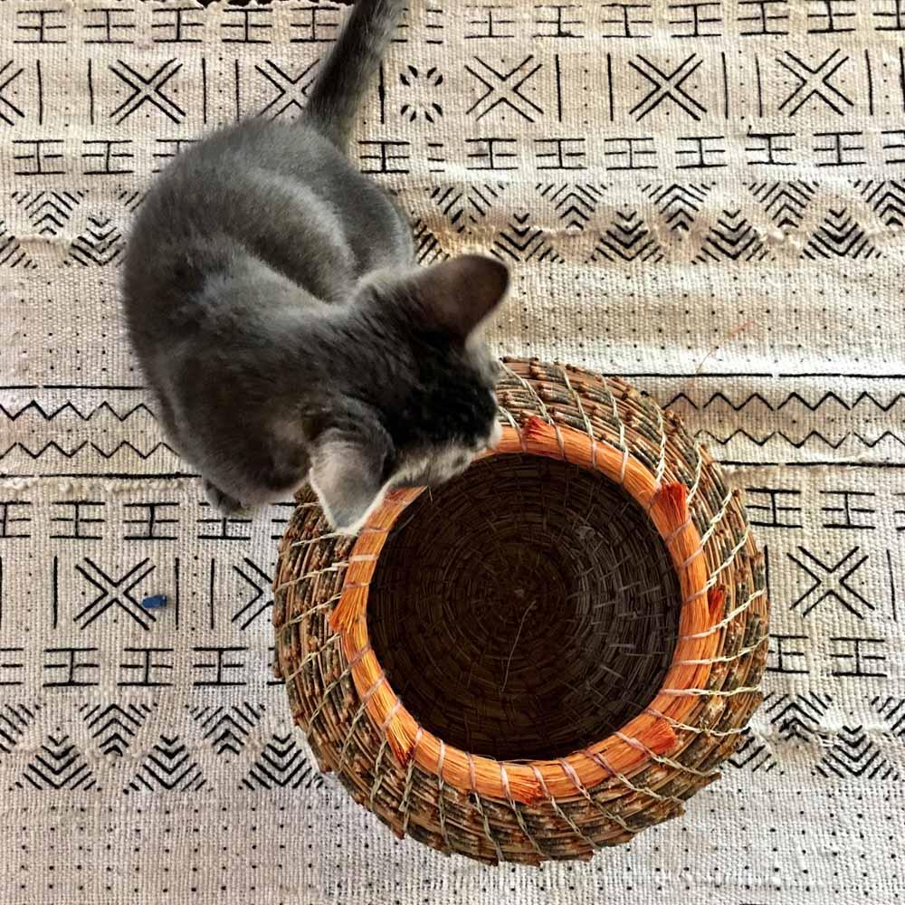 cat and artisan basket